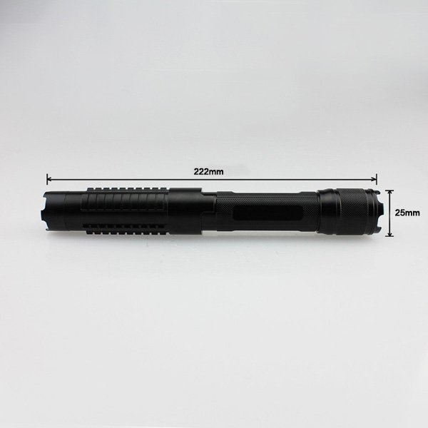 Blue Laser Pointer 1W